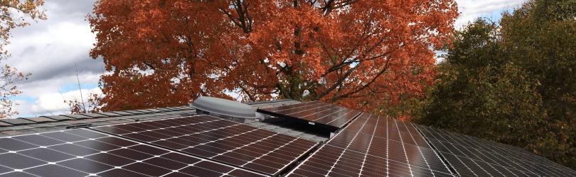 Zonnepanelen met herfstboom